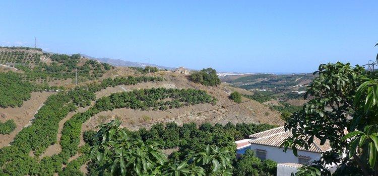 Villa Andalusië tussen mangobomen op 17km van zee
